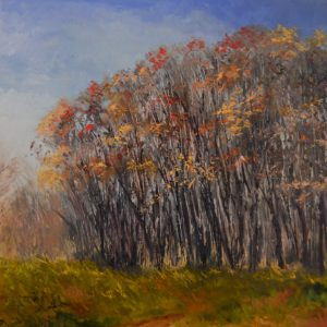 SStefanski_The Woods_24x30_oil_1400