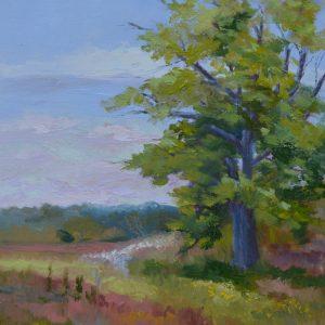 Stefanski S_Kirkwood Path_12x14_oil_$450