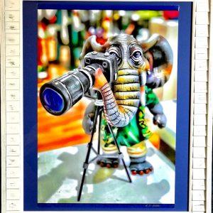 framed elephant hcg