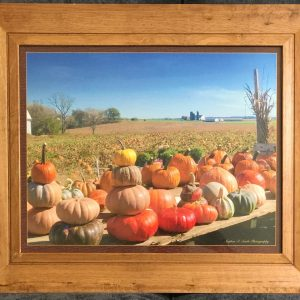 pumpkin patch hcg