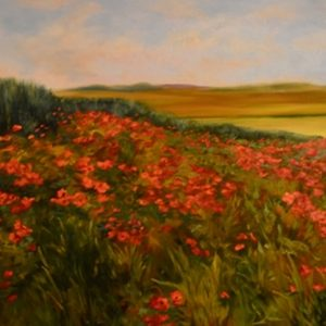sstefanski_Poppies_24x30_Oil_$1400