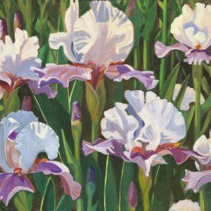Iris Field 22 x 30 copy