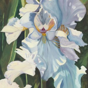 Eileen Rudisill Miller-White Iris