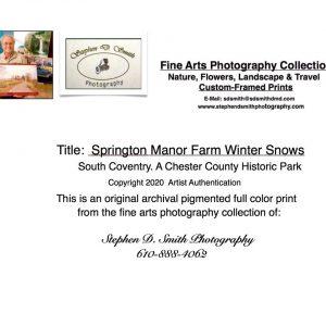 springton manor winter snow card