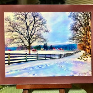springton manor winter snow photo